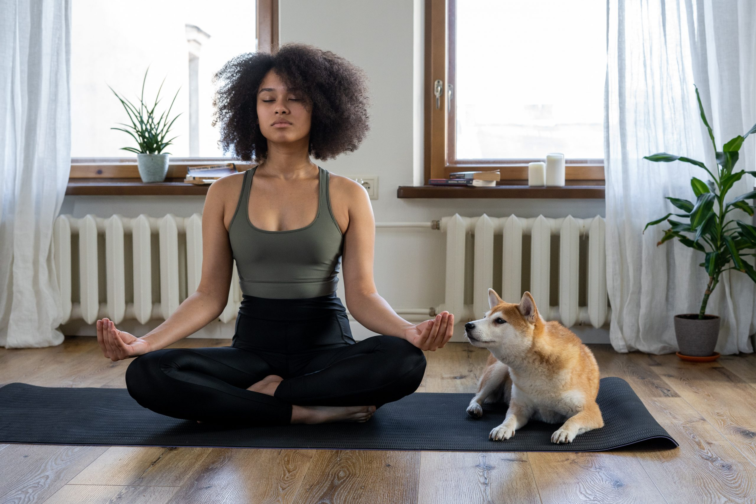 Finding time to Meditate